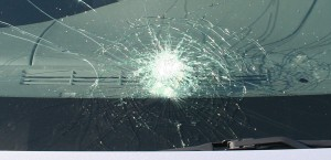 questions to ask before you replace your windshield